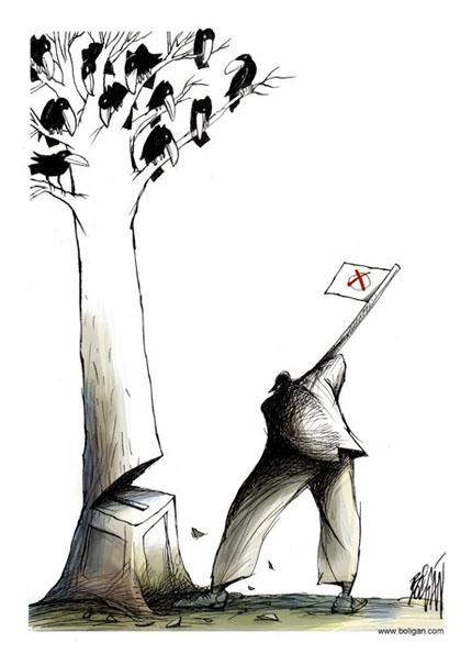 boli-tree.jpg