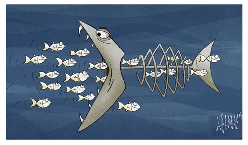 alperen-fish.jpg