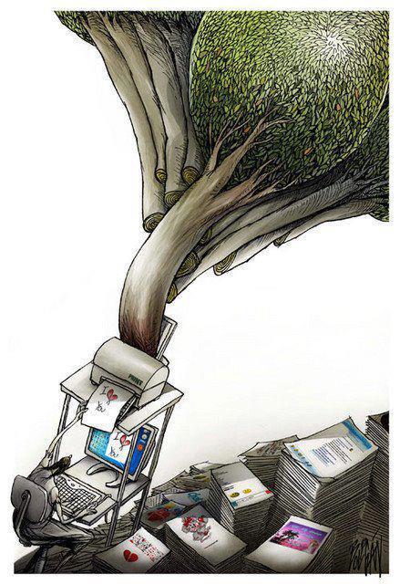 boli-books.jpg