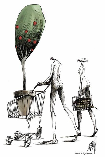 boli-shopping.jpg